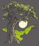 Hand drawn tree symbol  vector Royalty Free Stock Photos