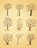 Hand drawn trees isolated Stock Photography