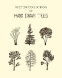 Hand drawn trees Stock Photo
