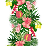 Hand drawn tropical background stock illustration