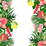 Hand drawn tropical background vector illustration