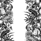 Hand drawn tropical background royalty free illustration