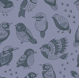 Hand drawn tropical birds pattern Stock Photo