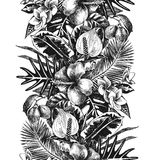 Hand drawn tropical border Royalty Free Stock Photography