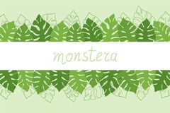 Hand drawn tropical frame, band with copy space design with monstera deliciosa leaves stock image
