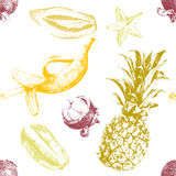 Hand drawn tropical fruits seamless Royalty Free Stock Photos