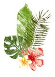 Hand Drawn Tropical Leaves And Flowers Royalty Free Stock Photo
