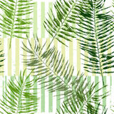 Hand drawn tropical leaves seamless Stock Image