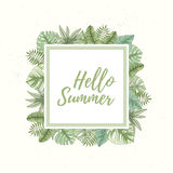 Hand drawn tropical palm leaves card Stock Photography