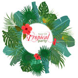 Hand drawn tropical palm leaves and jungle exotic flower flyer template on white background with seamless frame border. Banner, poster, flyer, card, postcard Stock Images