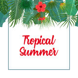 Hand drawn tropical palm leaves and jungle exotic flower flyer template on white background with seamless frame border Stock Photo