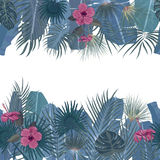 Hand drawn tropical palm leaves and jungle exotic flower holiday template on white background with seamless frame border. Hand drawn tropical palm leaves and Stock Image