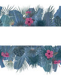 Hand drawn tropical palm leaves and jungle exotic flower holiday template on white background with seamless frame border Stock Photos