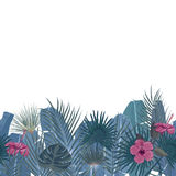 Hand drawn tropical palm leaves and jungle exotic flower holiday template on white background with seamless frame border. Hand drawn tropical palm leaves and Stock Photography