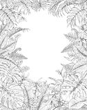 Hand Drawn Tropical Plants Frame. Hand drawn branches and leaves of tropical plants. Monochrome rectangle vertical l floral frame. Monstera, fern, palm fronds Royalty Free Stock Photos