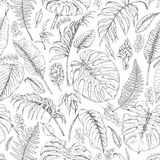 Hand Drawn Tropical Plants Pattern. Hand drawn branches and leaves of tropical plants. Monochrome  floral pattern. Monstera, fern, palm fronds sketch. Black and Royalty Free Stock Photo