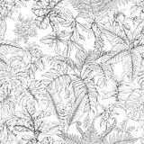 Hand Drawn Tropical Plants Pattern. Hand drawn branches and leaves of tropical plants. Monochrome sketch floral pattern. Black and white seamless texture Royalty Free Stock Photos