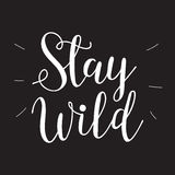 Hand drawn typography poster - Inspirational quote `Stay wild`. Stock Images