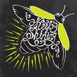 Hand drawn typography poster. Phrase Keep shining with Firefly. Stock Photo