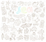 Hand drawn underwater animals set Royalty Free Stock Photo