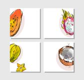 Hand drawn vector abstract artistic freehand textured unusual cards set collection template with exotic tropical fruits. Papaya,dragon fruit,coconut and Royalty Free Stock Image