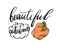 Hand drawn vector abstract autumn illustration with pumpkins and ink handwritten lettering phase beautuful autumn. Isolated on white background Royalty Free Stock Images