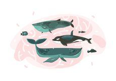 Hand drawn vector abstract cartoon graphic summer time underwater illustrations collection set with coral reefs and. Beauty big whales characters isolated on Royalty Free Stock Images