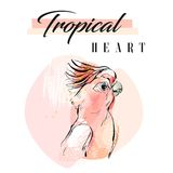 Hand drawn vector abstract creative tropical parrot collage with freehand organic texture and Tropical heart modern Stock Photo