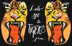 Hand drawn vector abstract graphic drawing of anger tigers faces in orange colors  on black background with Stock Photography