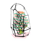 Hand drawn vector abstract illustration with rough terrarium and succulent plants in pastel color isolated on white Royalty Free Stock Photos