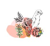 Hand drawn vector abstract ink drawing sketch illustrations collage with tribal tropical wildlife parrots and cactus. Plants isolated on white background Stock Photo
