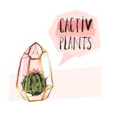 Hand drawn vector abstract succulent plant illustration with rough terrarium and succulent plant in pastel colors. Isolated on white bakground.Design for Royalty Free Stock Images