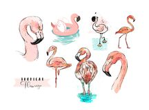 Hand drawn vector abstract summer time freehand textured tropical pink flamingo collection illustrations set in stock illustration