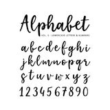 Hand drawn vector alphabet. Brush script font. Isolated lower case letters and numbers written with marker or ink. Calligraphy, lettering vector illustration
