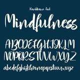 Hand drawn vector alphabet. Calligraphy letters for your design Royalty Free Stock Images