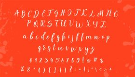 Hand drawn vector alphabet. Calligraphy letters for your design.  Stock Photos