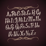 Hand drawn vector alphabet letters. Handwritten calligraphy type Stock Images