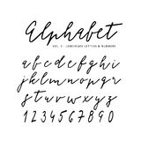Hand drawn vector alphabet. Signature script font. Isolated letters written with marker, ink. Calligraphy, lettering. Royalty Free Stock Photography