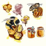 Hand drawn vector bees and honey, illustration isolated on white set stock illustration
