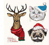 Hand drawn vector of cat with christmas Stock Photo
