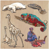 An hand drawn vector collection, pack of animals. Colored line a Royalty Free Stock Photography
