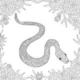 Hand drawn vector doodle outline snake decorated with ornaments.Ready for adult anti stress coloring book.  Stock Photo