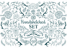 Hand drawn vector elements. Hand-drawn vector floral design elements in rustic style