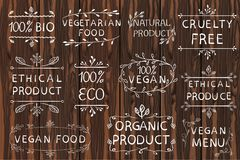 Hand drawn VECTOR elements on light wooden background. Black lines. Bio, organic, ethical products. Vegan menu Stock Image