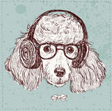 Hand Drawn Vector Fashion Portrait of Poodle.  Stock Photography