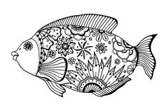 Hand drawn vector fish. With floral elements in black and white doodle style. Pattern for coloring book Royalty Free Stock Image