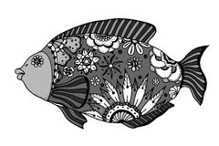 Hand drawn vector fish. With floral elements in black and white doodle style. Pattern for coloring book Stock Images