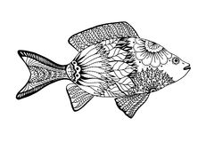 Hand drawn vector fish. With floral elements in black and white doodle style. Pattern for coloring book Royalty Free Stock Photo