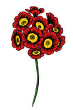 Hand drawn vector flower Royalty Free Stock Photography