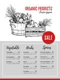 Hand drawn vector flyer - Organic Products. Fresh vegetables. Su. Permarket. Grocery store. Sketch. Template for your design royalty free illustration
